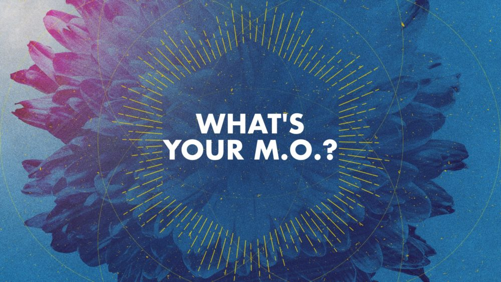 What\'s Your M.O.?